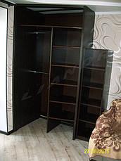 Шкаф-купе в кухню-студию, фото 3