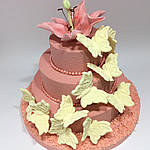 Торт Бабочки