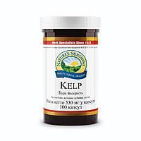 Kelp NSP/ Бурая водоросль (Келп) • Природный йод для щитовидной железы