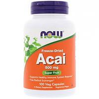Now Foods, Сублимированные ягоды асаи, 500 мг, 100 растительных капсул