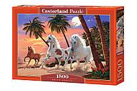 """Пазлы Castorland 1500 элементов - """"Белые лошади"""". Castoland 151691"""