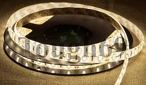 Светодиодная LED лента SMD 5630 60LED/m (IP20) premium Теплый белый