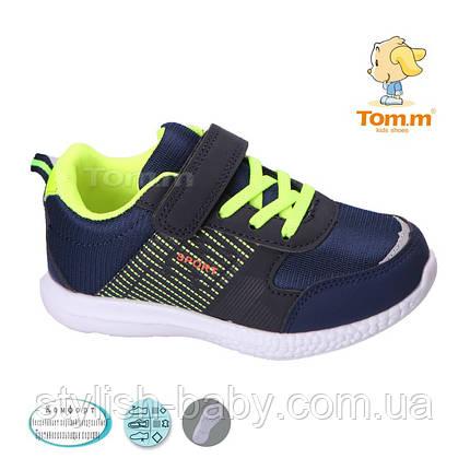 989ee1d7b Детская спортивная обувь оптом. Детские кроссовки бренда Tom.m для мальчиков  (рр. с 27 по 32)