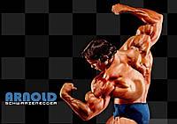 Плакат Арнольд Шварценеггер 05