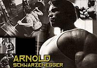 Плакат Арнольд Шварценеггер 08