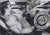 Плакат Арнольд Шварценеггер 18