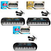 Синтезатор HS4911-21-31  49клавиш,микрофон,USBзарядн,запись,демо,3вида,на бат,в кор,66-24-10см