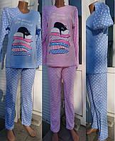 Женская пижама интерлок с котом в горох 42-52 р, женские пижамы оптом от украинского производителя