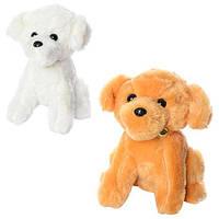 Мягкая игрушка MP 1365 (48шт) собачка, размер средний+,присоска,колокольчик,зв,2цв,на бат(таб), 24см
