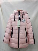 Детская демисезонная  курточка  для девочки размер 116 по 134 , фото 1