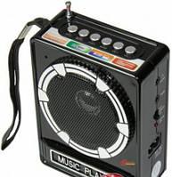 Цифровой радиоприёмник NS 017U. Акция