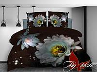Полуторный комплект постельного белья TM TAG (микросатин)
