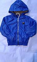 Куртка ветровка на флисе для мальчика на 2-6 лет ярко синего цвета с капюшоном  оптом