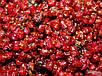 Пеллет Пак Холодный карп 0,8 кг.+100мл аромы + 100гр клея+ 100мл аромы для холдной воды, фото 5