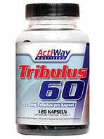 Трибулус-60 / ACTIWAY - Tribulus-60 (120 caps)