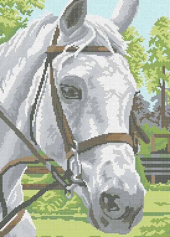 Схема для вышивания бисером Лошадь БИС3-64 (А3)