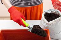 Выбираем и готовим почву для рассады помидоров