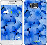 "Чехол на Samsung Galaxy Alpha G850F Синие цветы ""526c-65-2448"""