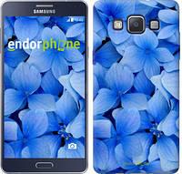 "Чехол на Samsung Galaxy A5 A500H Синие цветы ""526c-73-2448"""