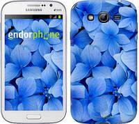 """Чехол на Samsung Galaxy Grand I9082 Синие цветы """"526c-66-2448"""""""