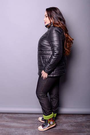 5f0f8a6150db Черная куртка для полных женщин Дебют