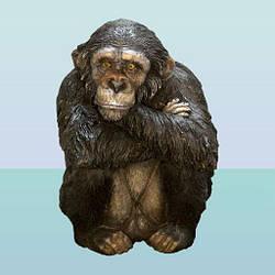 Скарбничка Шимпанзе