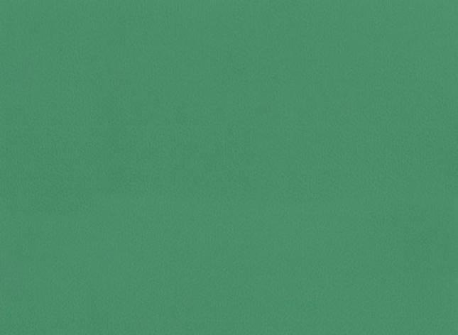 Спортивний лінолеум TARKETT OMNISPORTS V35 GREEN FIELD, фото 2