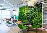 Система вертикального озеленения тип 10 (10 карманов 2*5), Gozon, фото 4