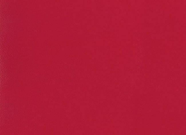 Спортивный линолеум  TARKETT OMNISPORTS V35 RED , фото 2
