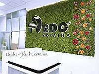 Фито-стены  из стабилизированного мха от Студии Зеленка