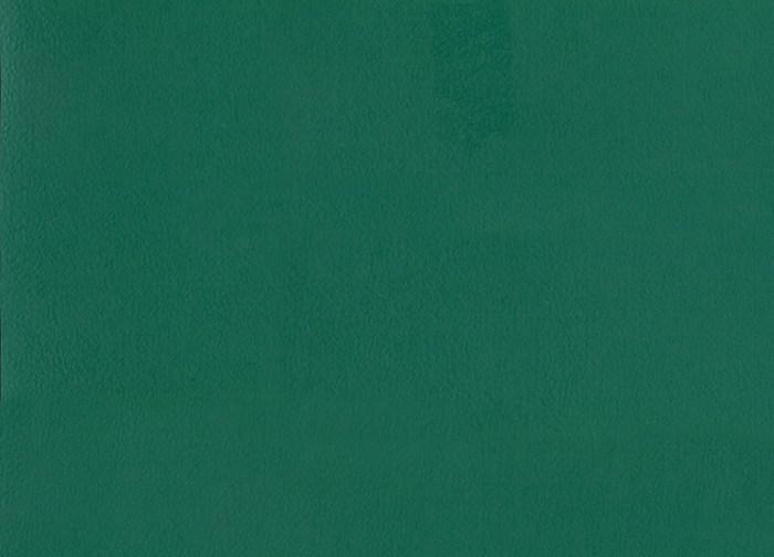 Спортивный линолеум  TARKETT OMNISPORTS V83 FOREST GREEN