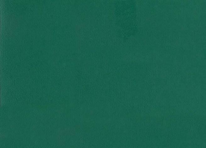 Спортивный линолеум  TARKETT OMNISPORTS V83 FOREST GREEN , фото 2