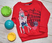 Батник для девочки (2-4 года)