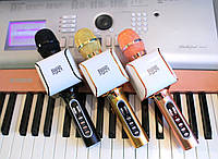 НОВИНКА! Караоке Микрофон очищает MP3 от голоса одной кнопкой! EverStar i8 Беспроводной / Bluetooth + FM