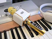 Караоке Микрофон с очисткой песен от голоса! EverStar i8 (Золотой) Беспроводной / Bluetooth+FM (GOLD), фото 1