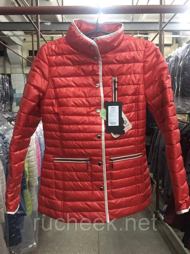 Женские демисезонные куртки Днепр