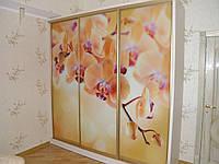 Шкаф-купе Орхидея 102 рисунок фотопечать  размер высота
