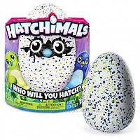 Интерактивная игрушка Spin Master Hatchimals Драко в яйце