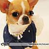 """Платье джинсовое для собаки, кошки """" Звезда"""" IS PET. Одежда для собак., фото 4"""