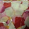 Лепестки роз искусственные 500 шт., фото 4