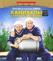DVD-диск Канікули суворого режиму (С. Безруков) (Росія, 2009)