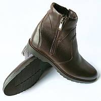 Зимняя мужская обувь Икос   кожаные ботинки коричневого цвета 93c88e14bd7c0