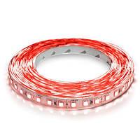 Светодиодная лента LED Biom 2835-120 IP20 красный цвет, негерметичная, 1м