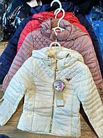 Детские модные весенние курточки 2-5 лет