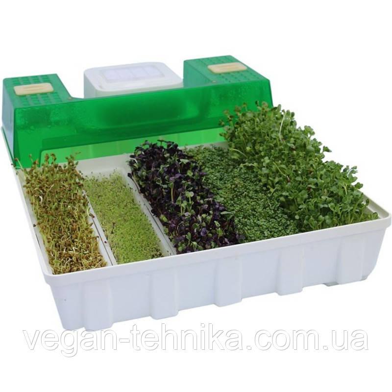 Микроферма EasyGreen EGL 55 Sprouter (проращиватель семян)