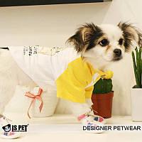 """Футболка  """"Влюбленный верблюд"""" для собаки, кошки IS PET. Одежда для собак."""