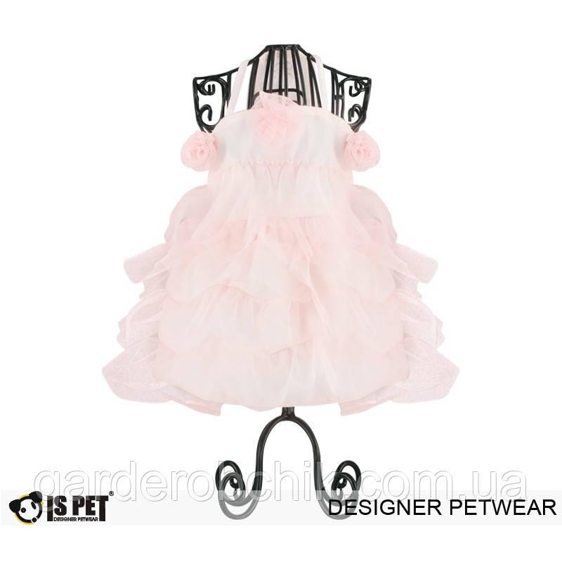 """Платье  """" Кружевной торт"""" для собаки, кошки IS PET. Одежда для собак."""