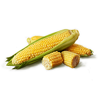 Гибрид кукурузы АС13280