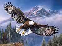 Алмазная вышивка 5D, Парящий орел, полная выкладка 30*20