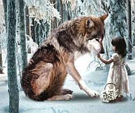 Алмазная вышивка 5D, Девочка с волком, полная выкладка 30*20